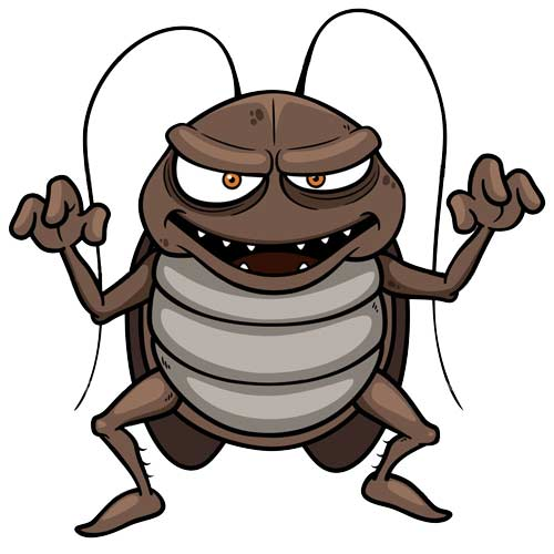 Pest Control Services New Jersey | Cockroach Pest Control